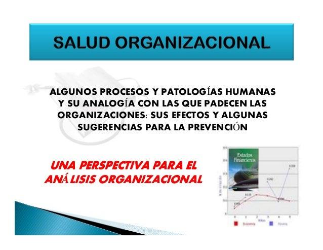 ALGUNOS PROCESOS Y PATOLOGÍAS HUMANAS Y SU ANALOGÍA CON LAS QUE PADECEN LAS ORGANIZACIONES: SUS EFECTOS Y ALGUNAS SUGERENC...