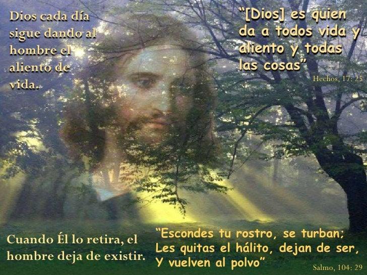 """""""[Dios] es quien da a todos vida y aliento y todas las cosas""""<br />Dios cada día sigue dando al hombre el aliento de vida...."""