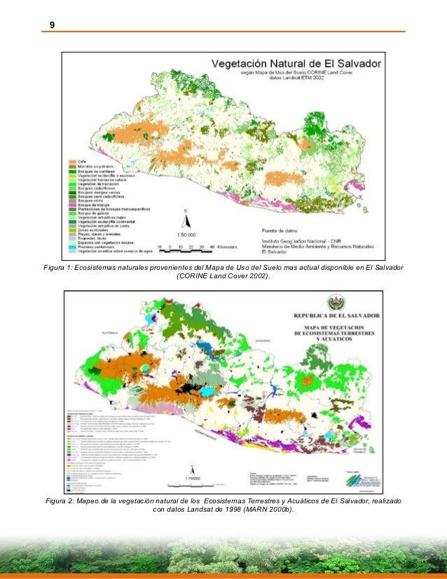 9 Figura 1: Ecosistemas naturales provenientes del Mapa de Uso del Suelo mas actual disponible en El Salvador (CORINE Land...