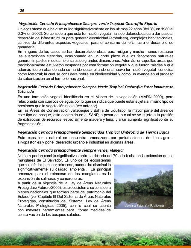 26 Vegetación Cerrada Principalmente Siempre verde Tropical Ombrofila Riparia Un ecosistema que ha disminuido significativ...