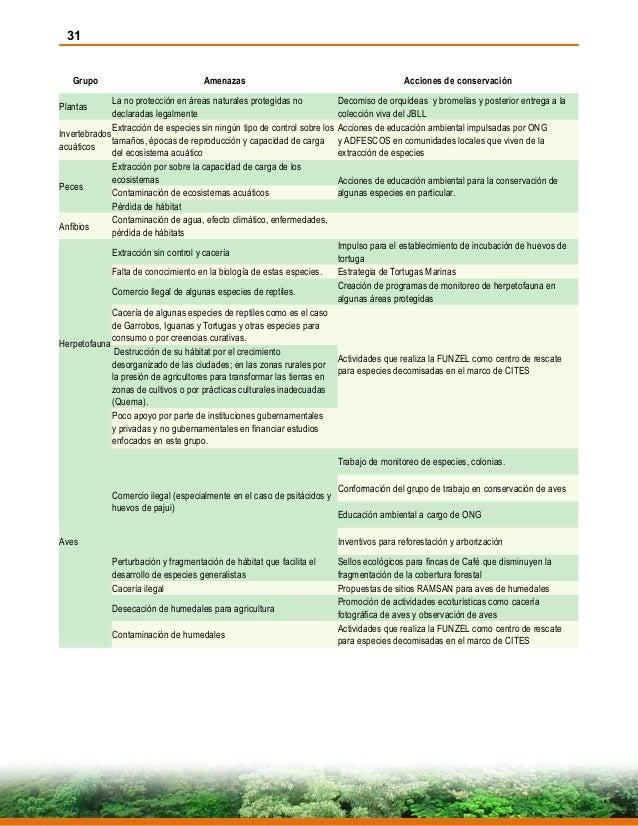 31 Grupo Amenazas Acciones de conservación Plantas La no protección en áreas naturales protegidas no declaradas legalmente...