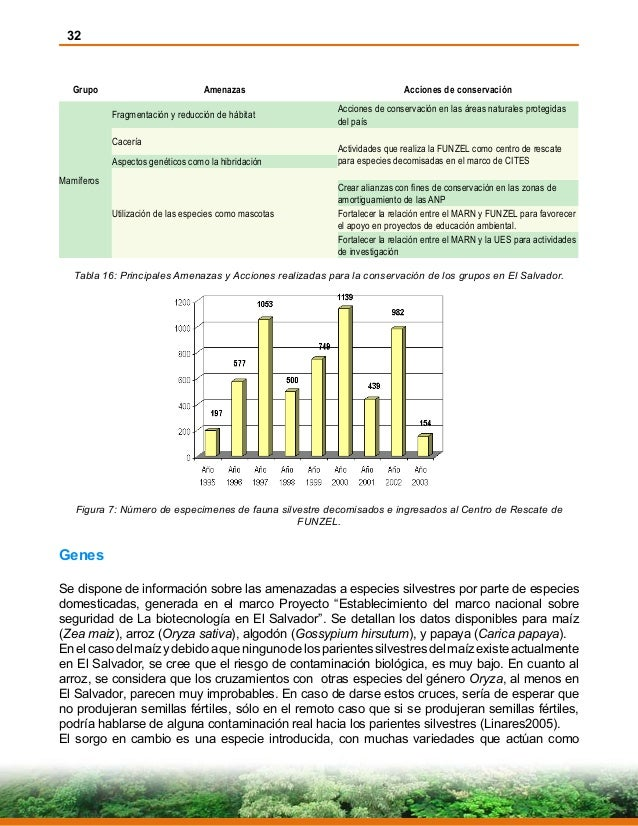32 Grupo Amenazas Acciones de conservación Mamíferos Fragmentación y reducción de hábitat Acciones de conservación en las ...