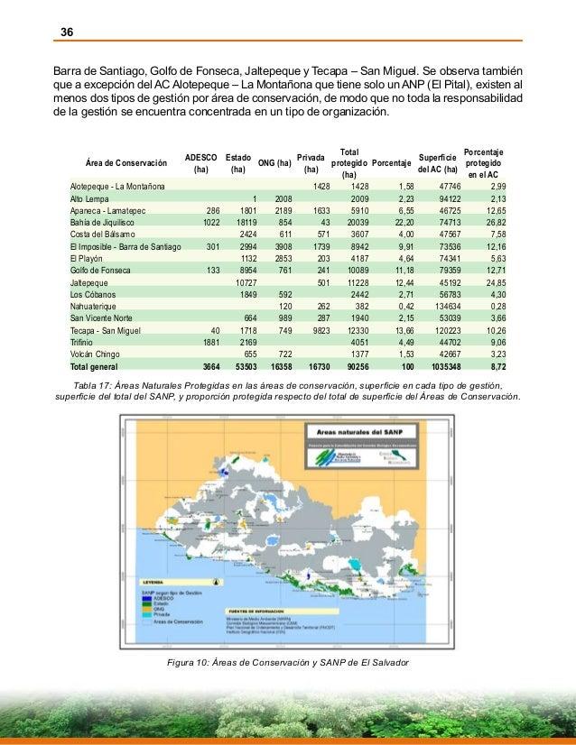 36 Barra de Santiago, Golfo de Fonseca, Jaltepeque y Tecapa – San Miguel. Se observa también que a excepción del AC Alotep...