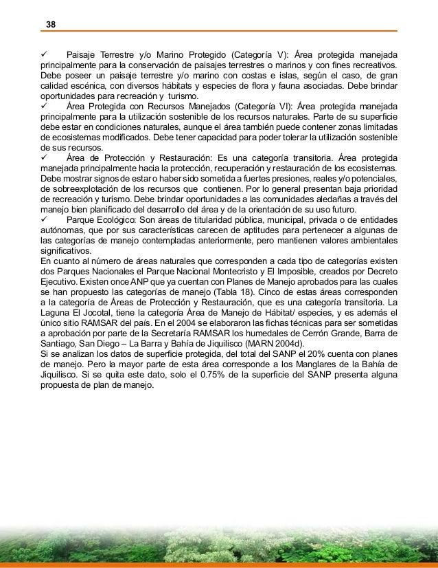 38  Paisaje Terrestre y/o Marino Protegido (Categoría V): Área protegida manejada principalmente para la conservación de...