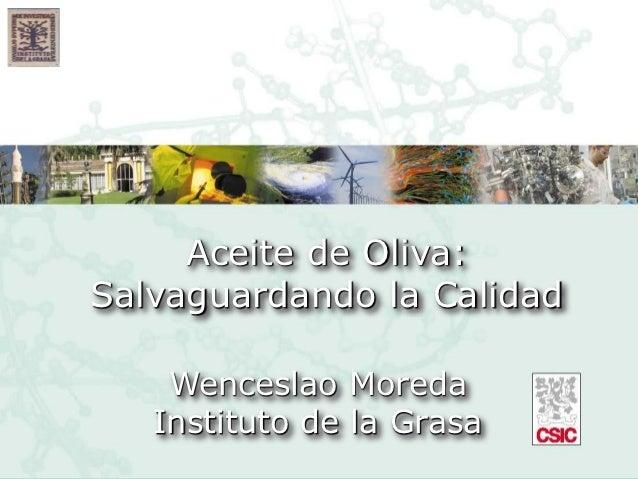 Aceite de Oliva:Salvaguardando la Calidad    Wenceslao Moreda   Instituto de la Grasa