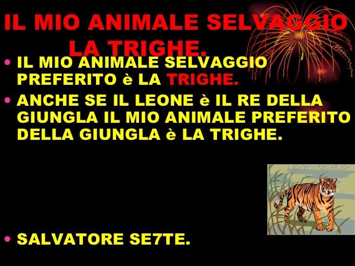 IL MIO ANIMALE SELVAGGIO   LA TRIGHE. <ul><li>IL MIO ANIMALE SELVAGGIO PREFERITO è LA  TRIGHE. </li></ul><ul><li>ANCHE SE ...