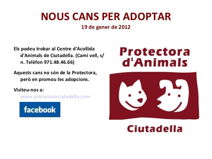 NOUS CANS PER ADOPTAR 19 de gener de 2012 <ul><li>Els podeu trobar al Centre d'Acollida d'Animals de Ciutadella. (Camí vel...