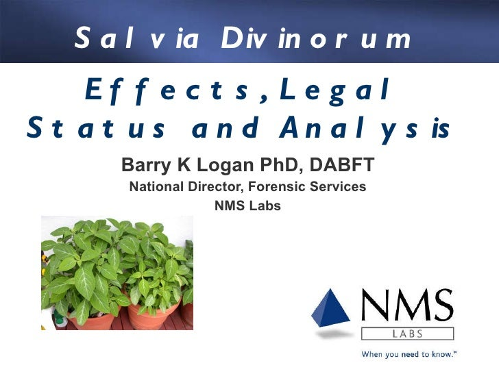 Barry K Logan PhD, DABFT National Director, Forensic Services NMS Labs Effects, Legal Status and Analysis Salvia Divinorum