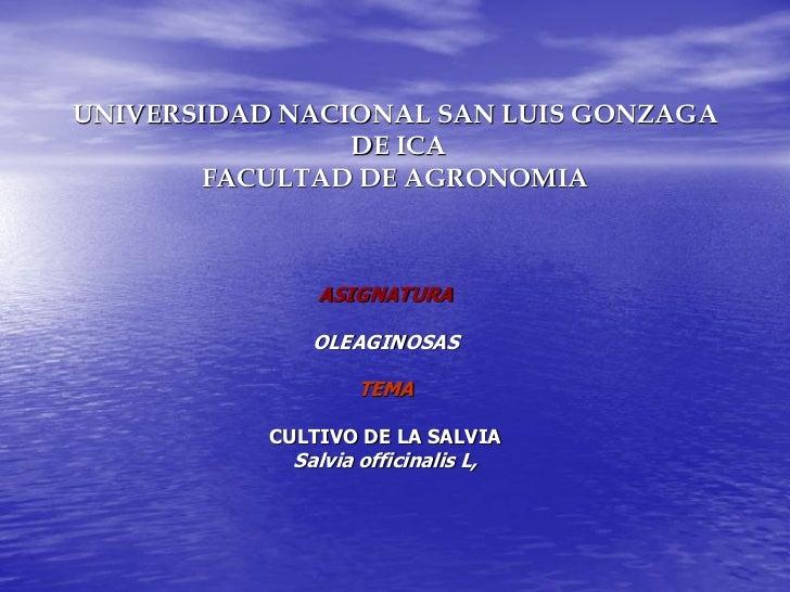 UNIVERSIDAD NACIONAL SAN LUIS GONZAGA                DE ICA       FACULTAD DE AGRONOMIA               ASIGNATURA          ...