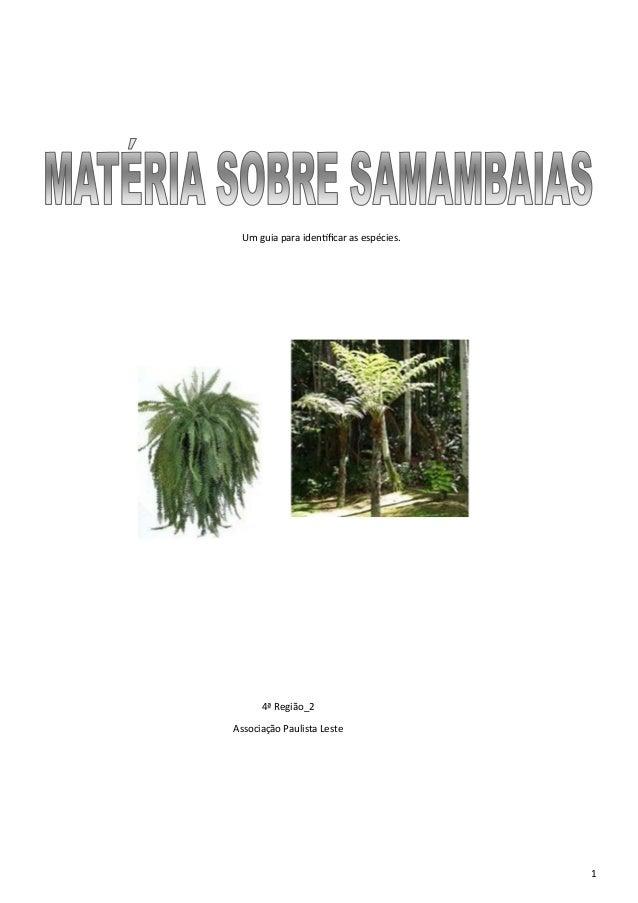 Um guia para identificar as espécies.  4ª Região_2 Associação Paulista Leste  1