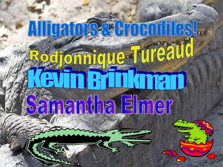 Alligators & Crocodiles! Rodjonnique Tureaud Kevin Brinkman Samantha Elmer
