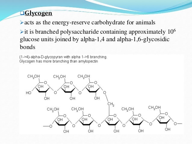 The Major Energy Storage Polysaccharide In Human Is Custom Paper