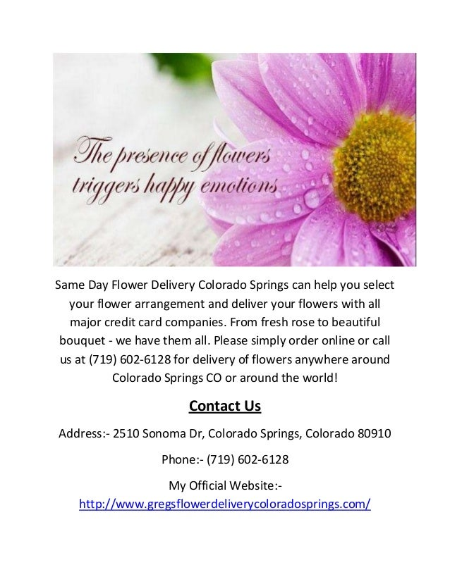 Same Day Flower Delivery In Colorado Springs Co