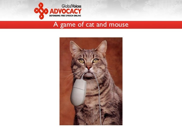 A game of cat and mouse