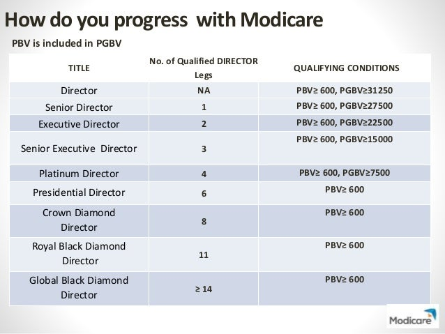 Modicare Business Plan – Products Commission