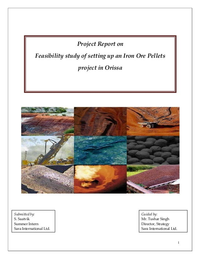 1 Project Report on Feasibility study of setting up an Iron Ore Pellets project in Orissa Submitted by: S. Saatvik Summer ...