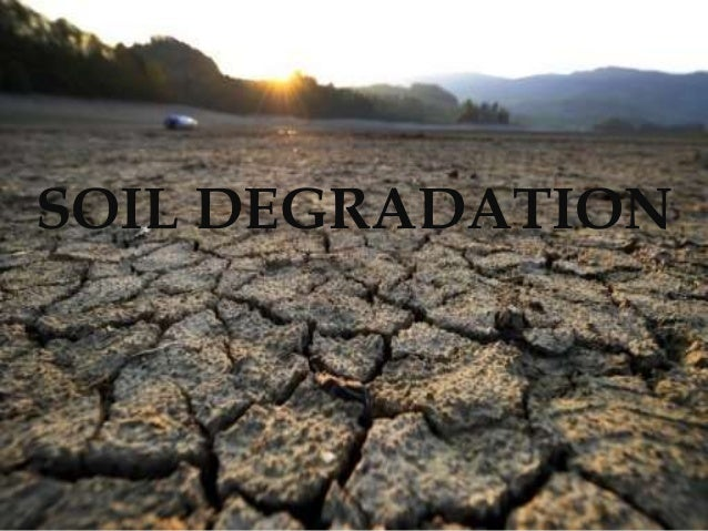 soil degridation Land degradation drives climate change, with deforestation - which contributes 10 percent of human-caused greenhouse gas emissions - and soil erosion worsening the.