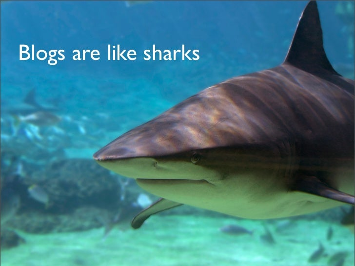 Blogs are like sharks