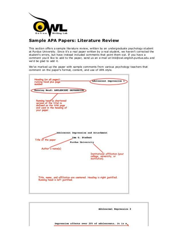 lit review format apa