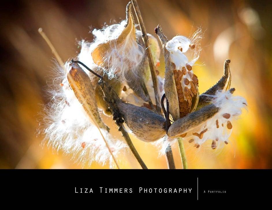 Liza Timmers Photography   A Portfolio