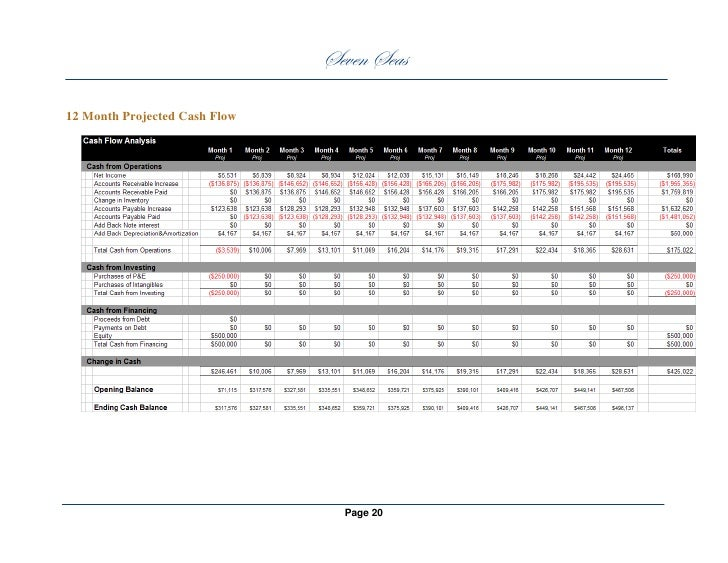 business plan 12 month profit and loss projection