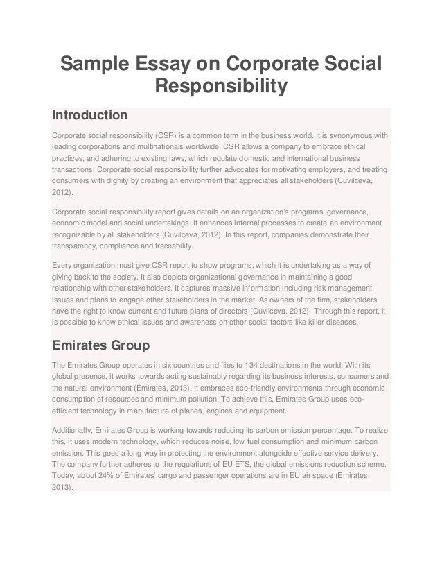 Teenage responsibility essay