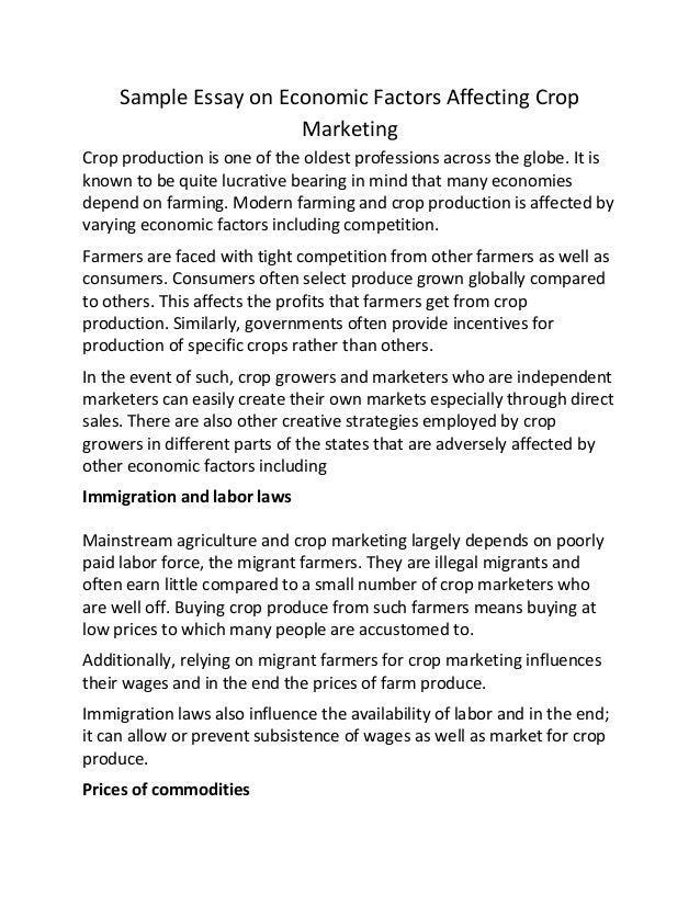 economics essay topics okl mindsprout co economics essay topics