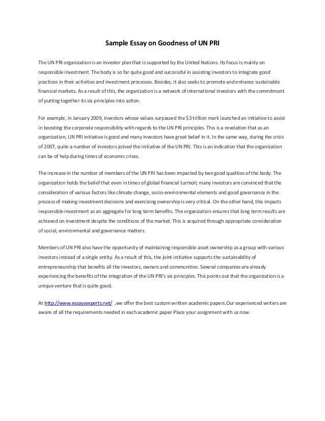 united nation organization essay