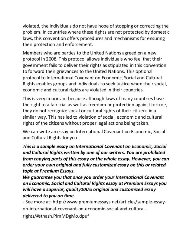 sample essay on international covenant on economic