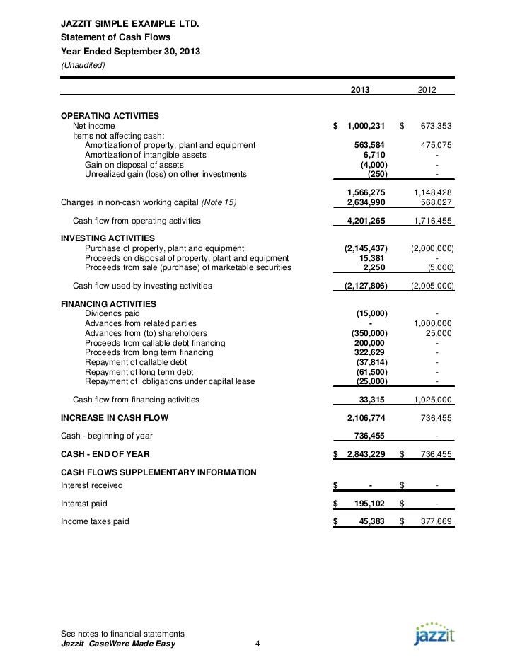 Sample Financial Statements From Jazzit Fundamentals