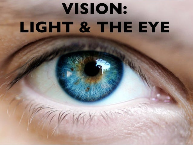 VISION: LIGHT & THE EYE