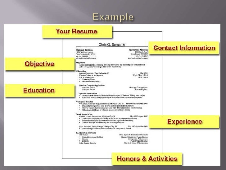 sample resume ppt