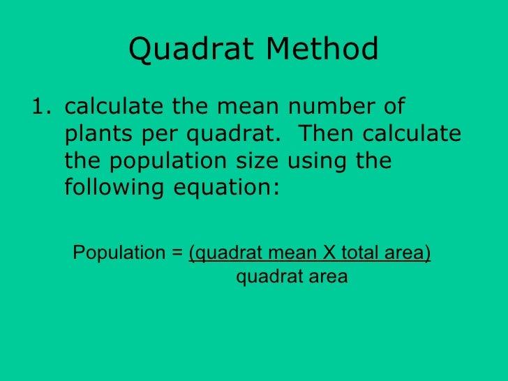 biology coursework quadrat