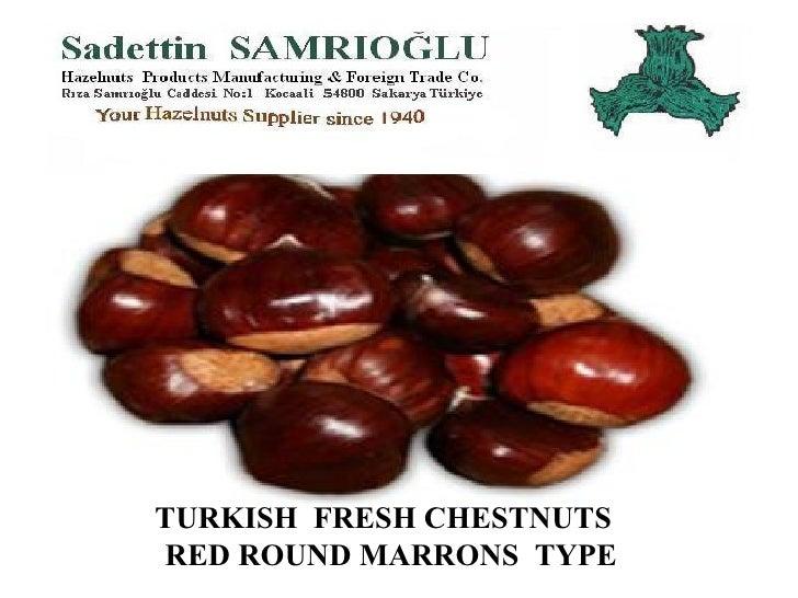 TURKISH  FRESH CHESTNUTS  RED ROUND MARRONS  TYPE