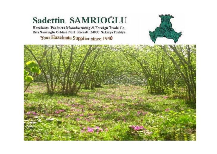 Welcome to SAMRIOĞLUHAZELNUTS, DRIED FRUITS & CHESTNUTS EXPORT TO THE WHOLE WORLDCompany was founded by Sadettin Samrıoğlu...