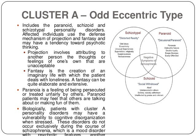 Don quixote character analysis essay
