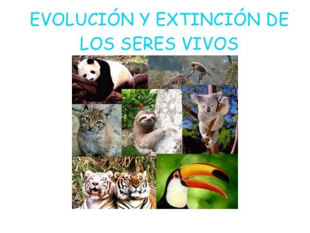 EVOLUCIÓN Y EXTINCIÓN DE    LOS SERES VIVOS