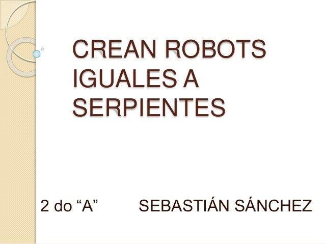 """CREAN ROBOTS  IGUALES A  SERPIENTES  2 do """"A"""" SEBASTIÁN SÁNCHEZ"""