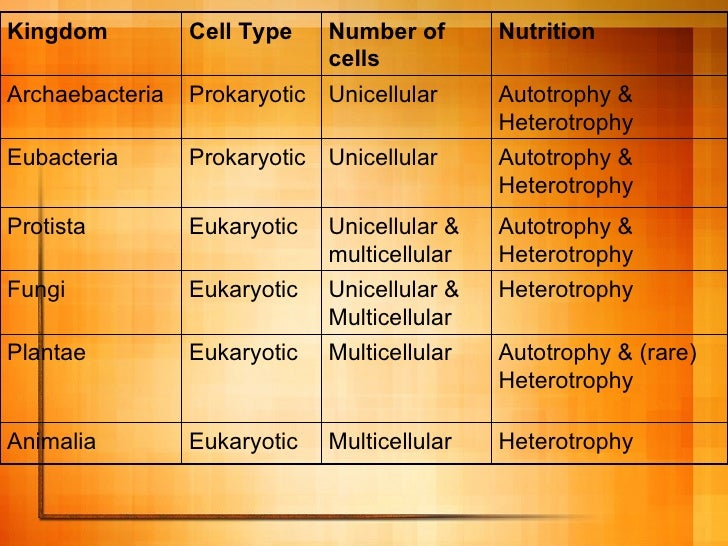 nutritional classification of bacteria pdf