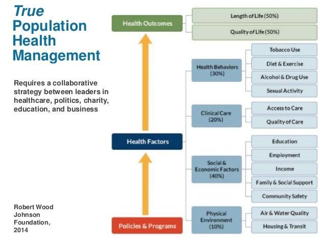 risk management plan assignment