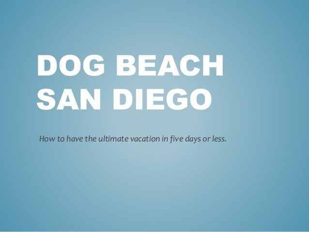 DOG BEACH SAN DIEGO How to have the ultimate vacation in five days or less.
