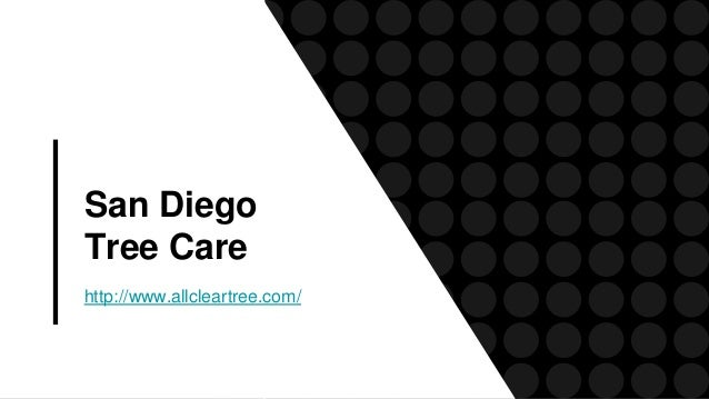 San Diego Tree Care http://www.allcleartree.com/