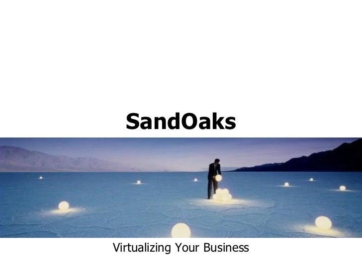 SandOaksVirtualizing Your Business