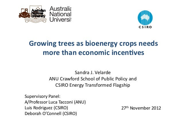 Sandra	   J.	   Velarde	    ANU	   Crawford	   School	   of	   Public	   Policy	   and	    CSIRO	   Energy	   Transformed	...