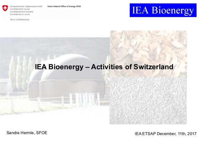 Sandra Hermle, SFOE IEA ETSAP December, 11th, 2017 IEA Bioenergy – Activities of Switzerland