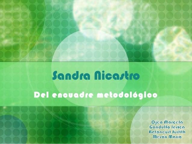Sandra Nicastro Del encuadre metodológico