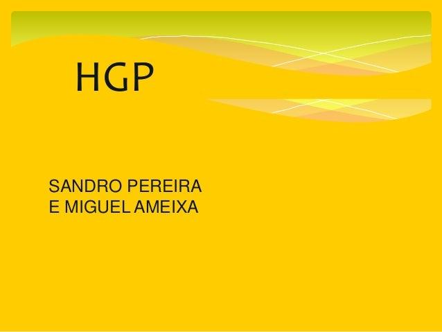 HGP SANDRO PEREIRA E MIGUEL AMEIXA