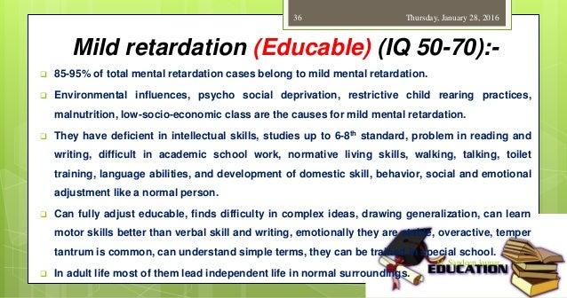 Adult mild mental retardation