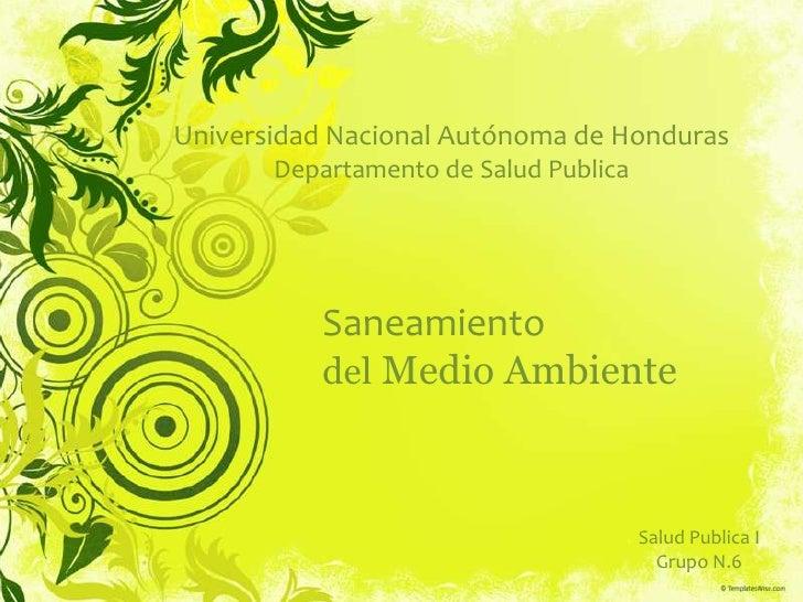 Universidad Nacional Autónoma de Honduras       Departamento de Salud Publica          Saneamiento          del Medio Ambi...