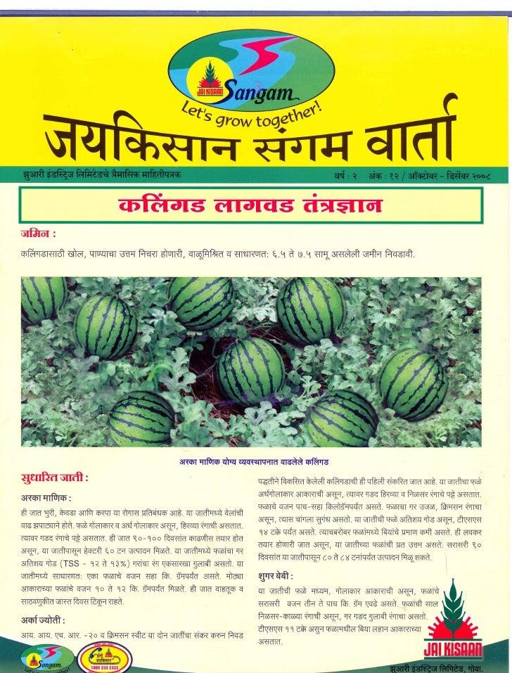 Sangam varta 20december2008 marathi